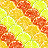 Orange, lemon and grapefruit slices. Royalty Free Stock Images