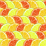 Orange, lemon and grapefruit slices. Stock Photo