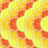 Orange, lemon and grapefruit slices. Stock Photography