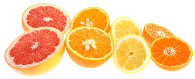 Orange, lemon, grapefruit and tangerine slices. Royalty Free Stock Image