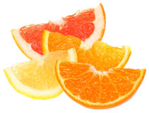 Orange, lemon, grapefruit and tangerine slices. Royalty Free Stock Images