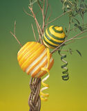 Orange and Lemon growing on a Tree. Bizarre picture of an orange and lemon on a interlaced tree branch Stock Photography