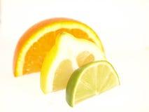 Orange, Lemon, Lime. Orange, Lemon and Lime segments on a white background Royalty Free Stock Photos