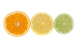 Orange, lemon, lime, citrus fruits Royalty Free Stock Image