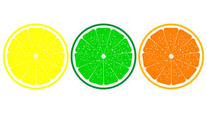 Orange, lemon, lime close up Royalty Free Stock Images