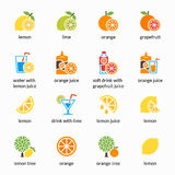 Orange, lemon, lime and grapefruit vector icons. Drink with citrus, alcohol lemonade Royalty Free Stock Images