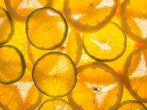 Orange lemon lime slices Stock Images