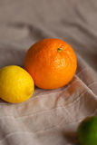 Orange a lemon a lime on a table Stock Photo