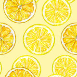 Orange lemon segments. Watercolor drawing. Handwork. Tropical fruit. Healthy food. Seamless pattern for design Royalty Free Stock Photos