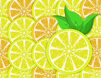 Orange and lemon slices Royalty Free Stock Photos