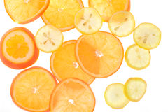 Orange and lemon slices, backlight, see-though, Royalty Free Stock Photography