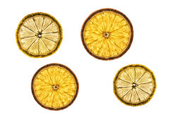 Orange and lemon slices Stock Image
