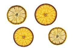 Orange and lemon slices. Isolated on white background Stock Image