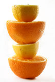 Orange & lemon tower. Cut lemon and orange in layers on a white background stock images