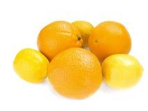 Orange and lemons Stock Photography