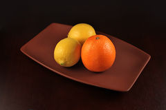 Orange and lemons composition Royalty Free Stock Photo