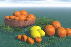 Orange and lemons Royalty Free Stock Photos