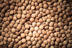 Orange lentil seeds as texture for background. Toned Stock Photography