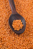 Orange lentils in red polished wooden spoon Stock Photo