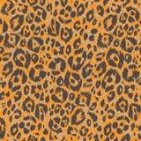 Orange Leoparddruck stockbilder