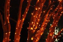 Orange Leuchten Lizenzfreies Stockfoto