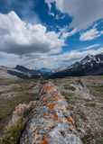 Orange Lichen Covered Rock Fin on Wilcox Pass. With mountains in background royalty free stock photography