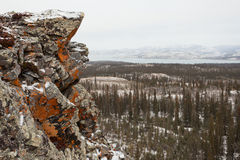 Orange lichen rock taiga Lake Laberge Yukon Canada royalty free stock photography
