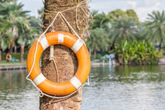 Orange life buoy is hanging in national green park, safety and s Stock Photos