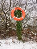 orange life buoy lake safety rope on stump outside in snow winte Royalty Free Stock Photography