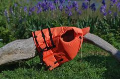 Orange life vest on the log. With Iris flowers in the background stock photography