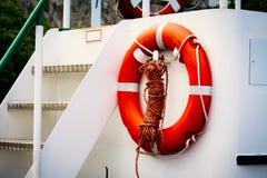 Orange lifebuoy on the railing.  Royalty Free Stock Photos