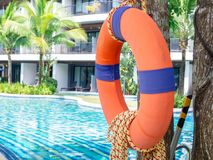 Lifebuoy with the rope hanging on the tree near the swimming pool and building stock photos