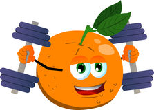 Orange lifting weight Stock Image