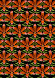 Orange lilja och knoppar på en svart sömlös bakgrund Arkivfoto