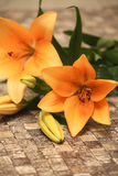 Orange lily. Flowers with decorations on a table Stock Photo