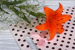 Orange lily flower framed by gypsophila and pink paper gift bag Royalty Free Stock Photo