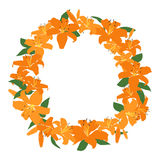 Orange lily frame, floral wreath circle frame, isolated vector Royalty Free Stock Images