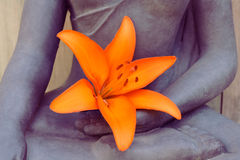 Orange lily hand buddha Royalty Free Stock Images
