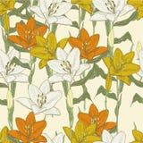 Orange lily Royalty Free Stock Image