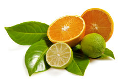 Orange and lime Stock Photography