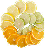 Orange, Lime And Lemon Fruit Slices X Stock Image