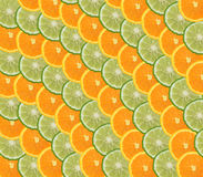 Orange and lime slices Stock Image