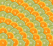 Orange and lime slices Stock Images