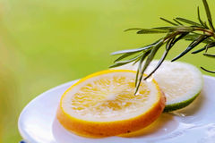 Orange and limon slice with rosemary. With nice color Stock Image