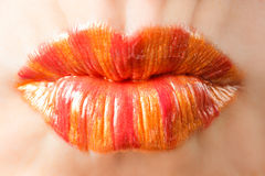 Orange lips. A woman with orange lipstick Royalty Free Stock Photo