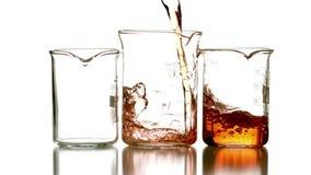 Orange liquid pouring into three beakers stock video footage
