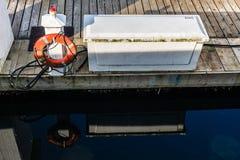 Orange livboj på pir och reflexion i vattnet arkivfoton