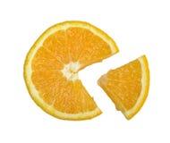 Orange lobule Stock Photography
