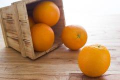 Orange. A lot of orange in basket royalty free stock image