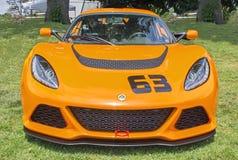 Orange Lotus Royalty Free Stock Photo